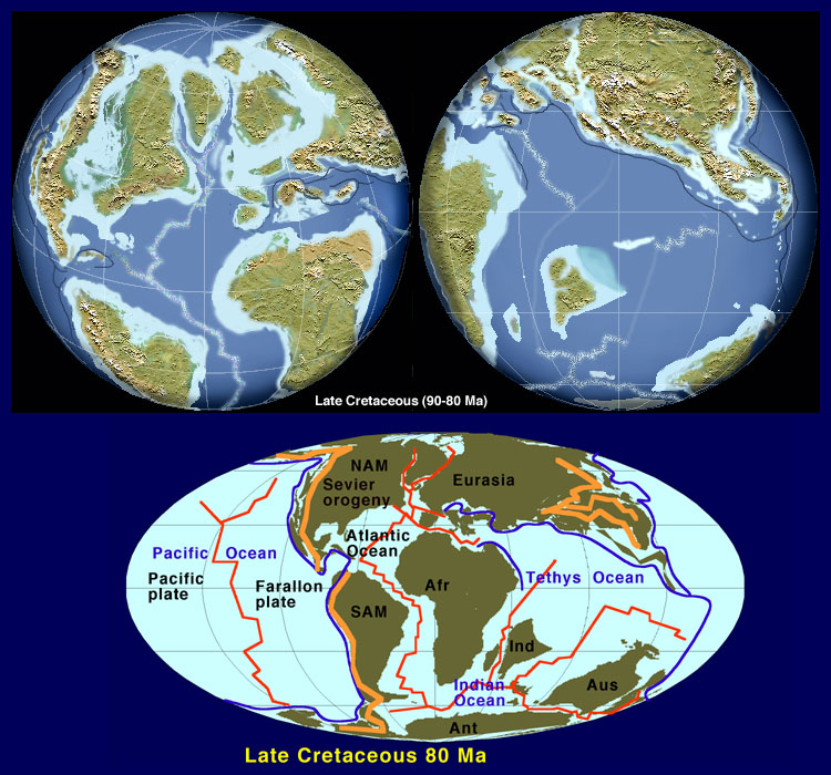 Paleobiology 4 the cretaceous world sciox Choice Image